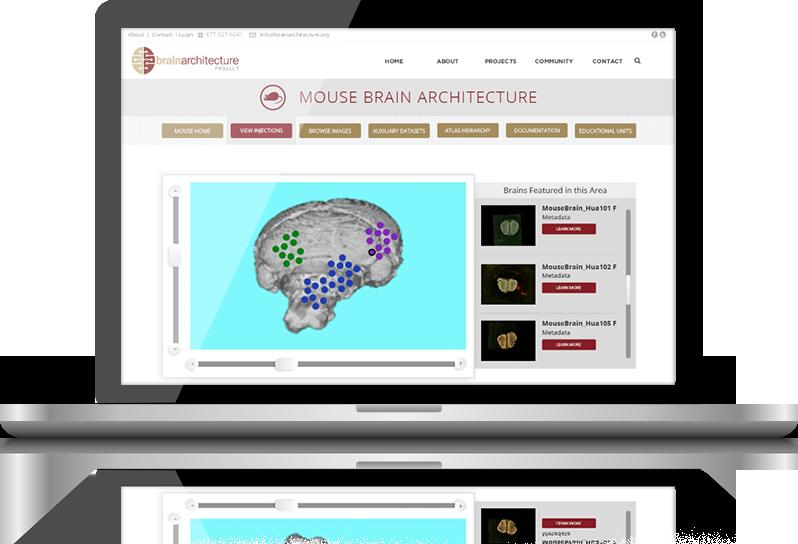 Neurobot » 2012 » August